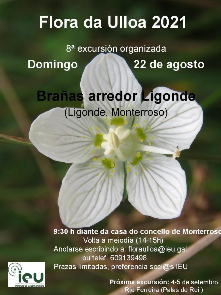 Excursión Flora da Ulloa 8ª-2021 Ligonde, Instituto de Estudos Ulloáns
