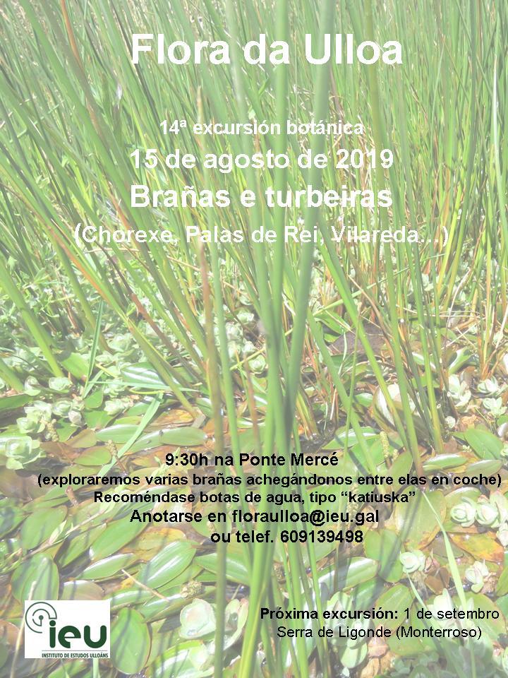 14ª excursión brañas e turbeiras da Ulloa, Instituto de Estudos Ulloáns, IEU, Proxecto Flora da Ulloa