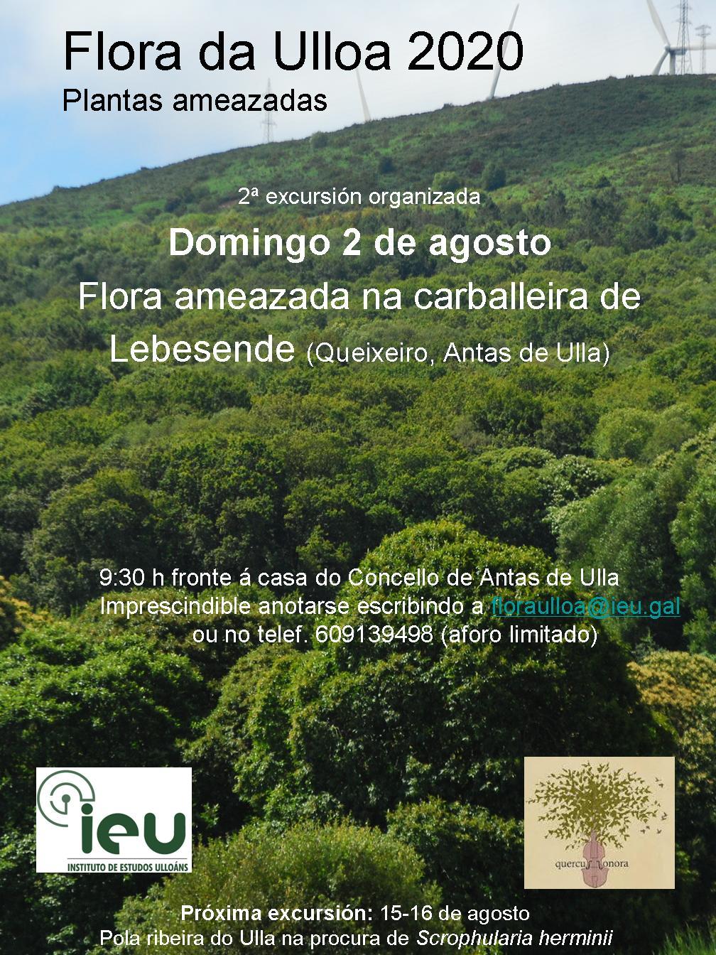 Excursión Flora da Ulloa 02-2020 Flora ameazada na carballeira de Lebesende, Instituo de Estudos Ulloáns