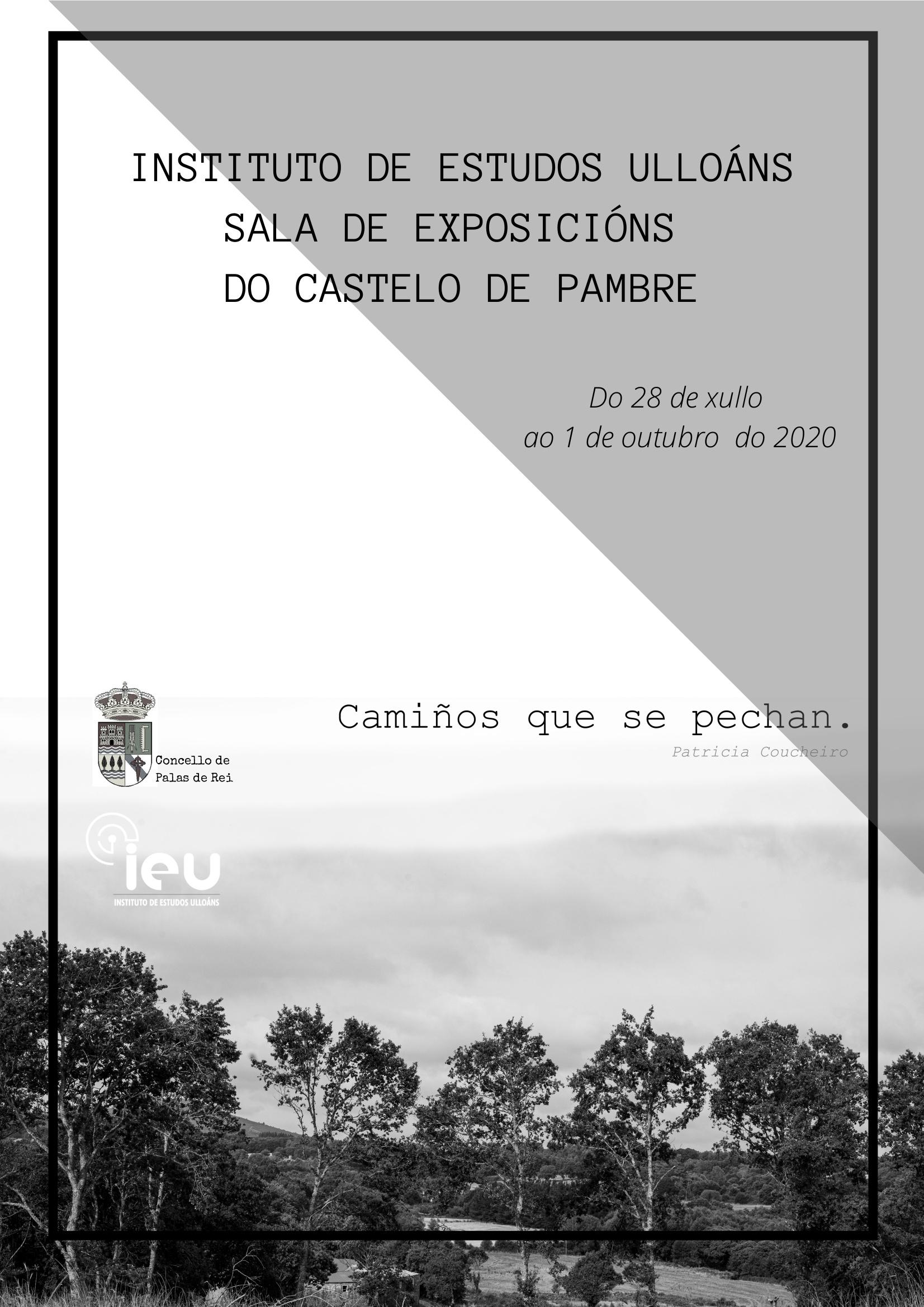 Cartaz Patricia Camiños que se pechan