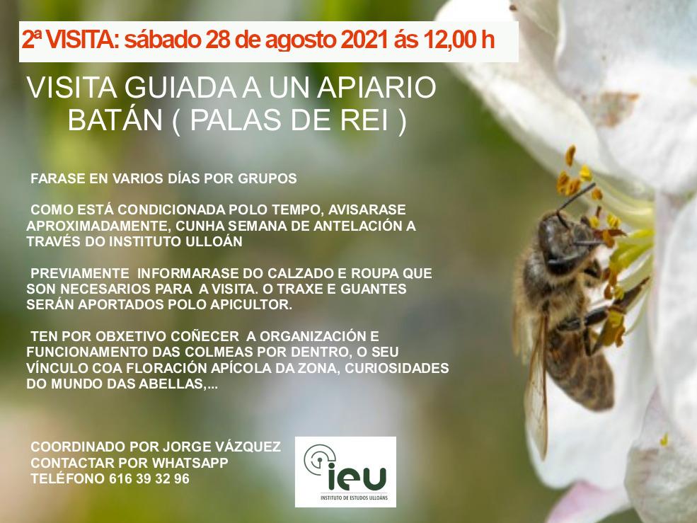 2ª visita apiario, Instituto de Estudos Ulloáns